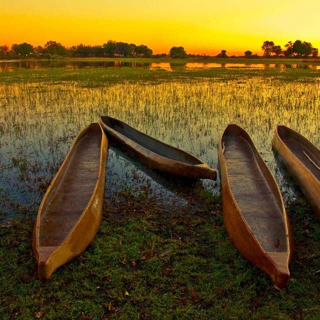 Honeymoon ideas in Botswana