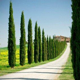 To Tuscany honeymoons (1)