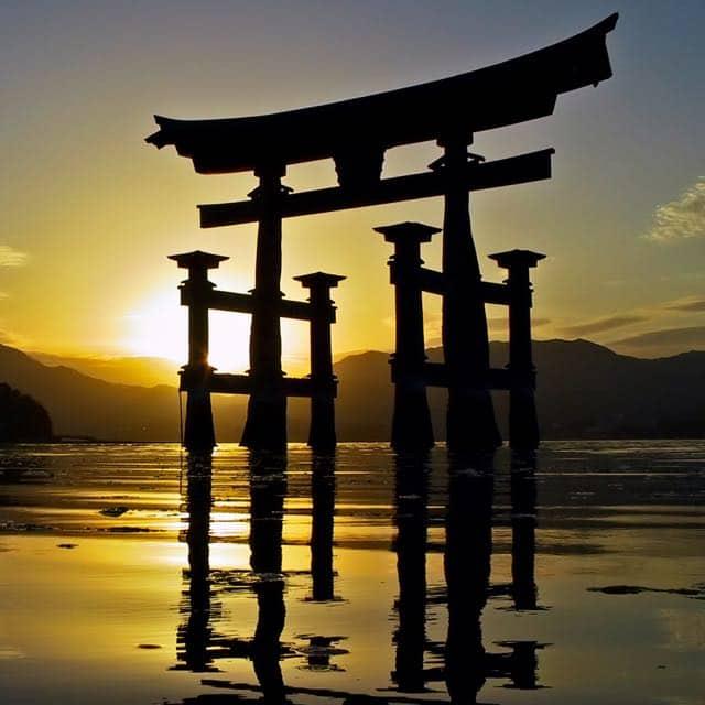 Honeymoons in Japan