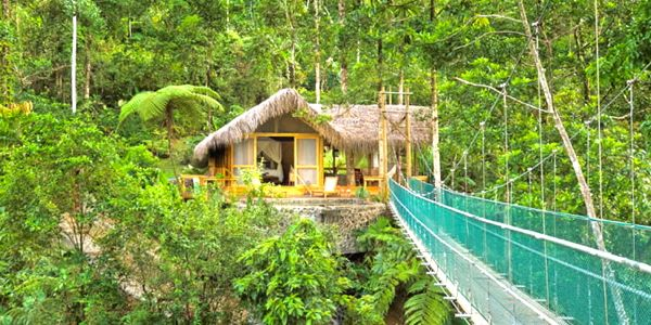 Costa Rica - Canopy Honeymoon Suite